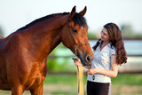 """Mane to Tail"" Care Everything for Your Horse on One Site!"