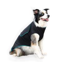 Canine Comfort Shirt