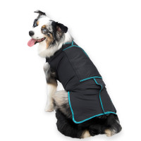 Canine Comfort Shirt back