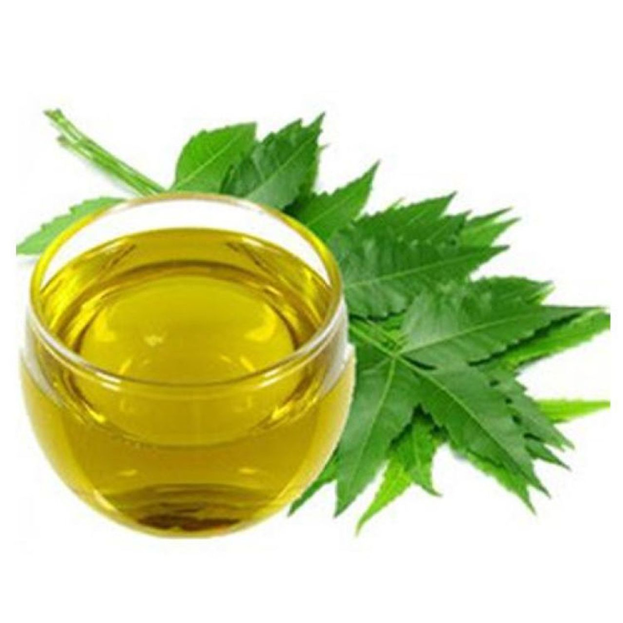 The Extremely Versatile Neem Oil