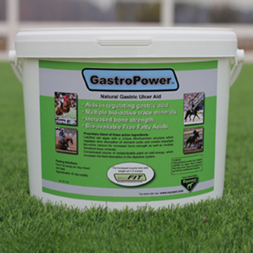 Gastropower Gastric Ulcer Aid 12 lb tub