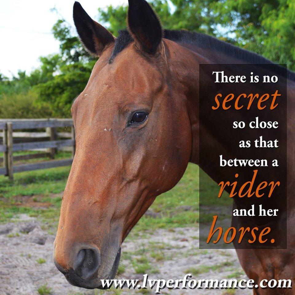 horse-and-rider-meme.jpg