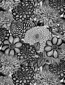 """108"""" Wide Back Black and White Floral"""