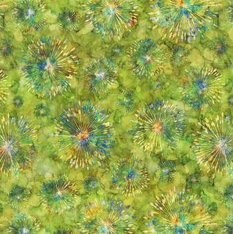 Botanica 1649-27412-H