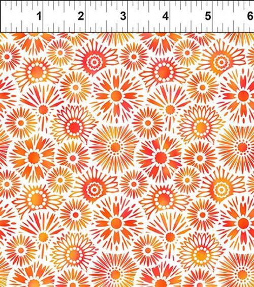 Unusual Garden 2-Blooms Orange/White