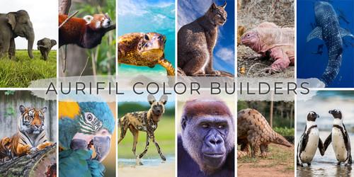 Aurifil Color Builder's 2021