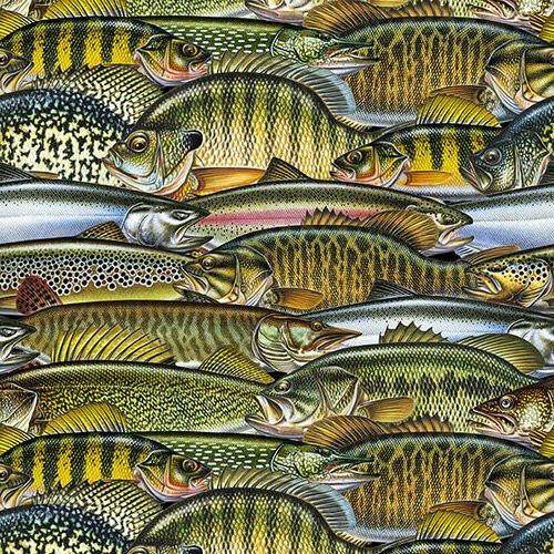 Keep It Reel-B-1357-60 Olive Fish Collage