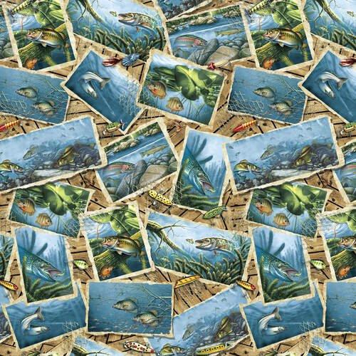 Keep It Reel-B-1356-70 Blue Fish Postcards