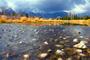 """Grand Teton Tears""- 24"" x 36"" x 1.50"" Photographic Canvas (Image and Print ©SternHatcher)"