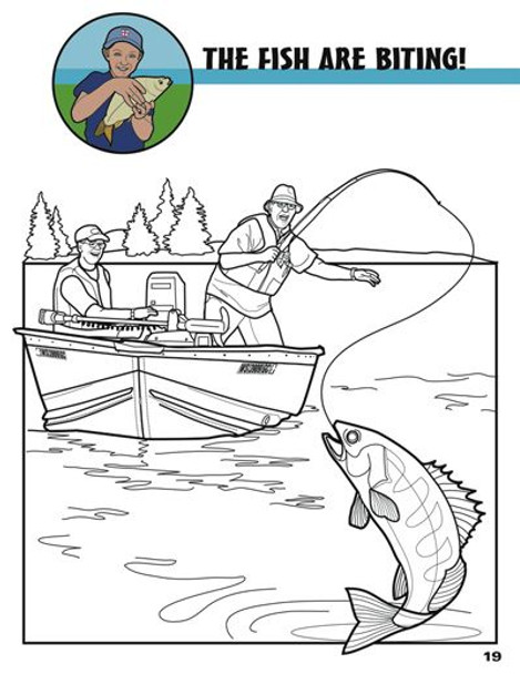 Connect with Color Adult Coloring Book Sport Page