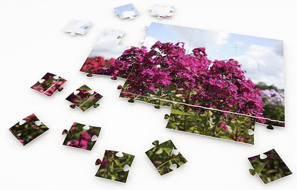 Fav Photo Picture Puzzles