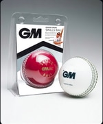 GM Cricket Balls
