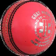 Gray Nicolls balls