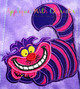 Alyce Cheshire Cat Applique Design