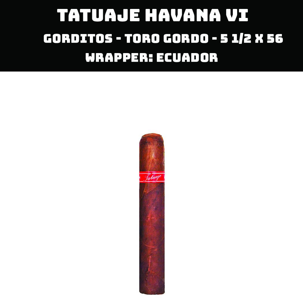 Tatuaje Havana VI | Gorditos