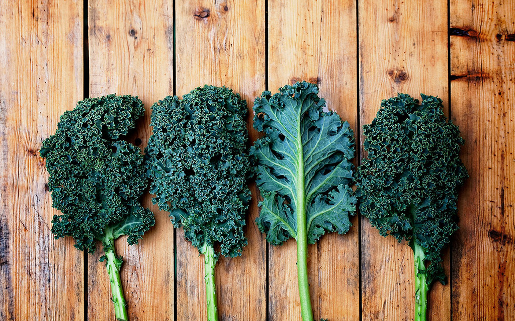 Kale And All Its Leafy Green Goodness