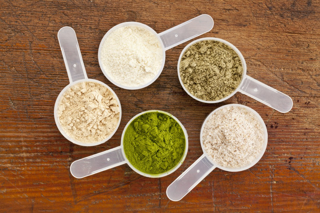 HEMP Protein VS. WHEY Protein