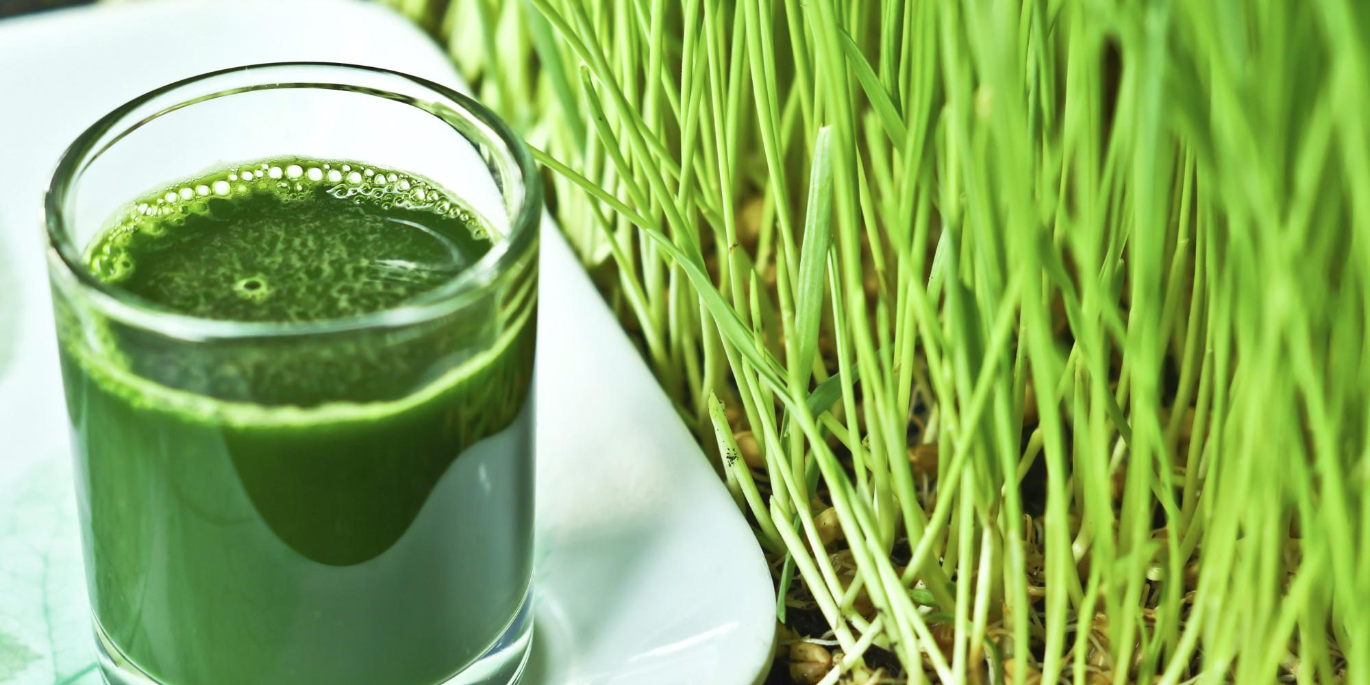 The Superfood Grass: Wheatgrass