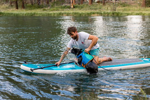 How to go paddle boarding with your dog