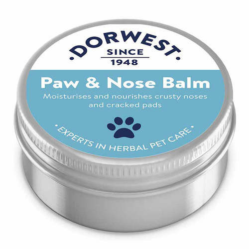 Dorwest Paw & Nose balm for dogs