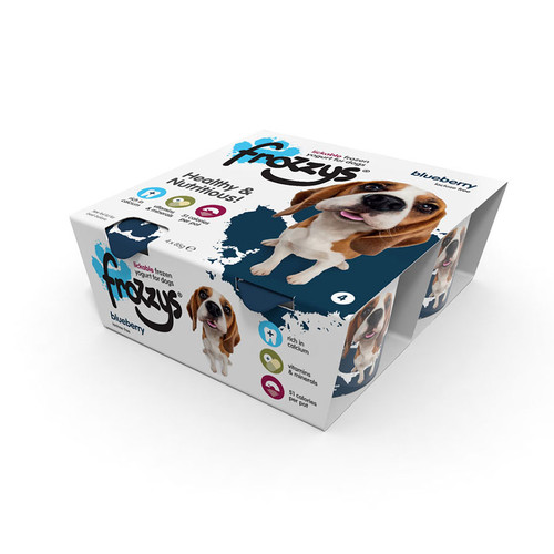 Frozzys 4 pack yoghurt in Blueberry