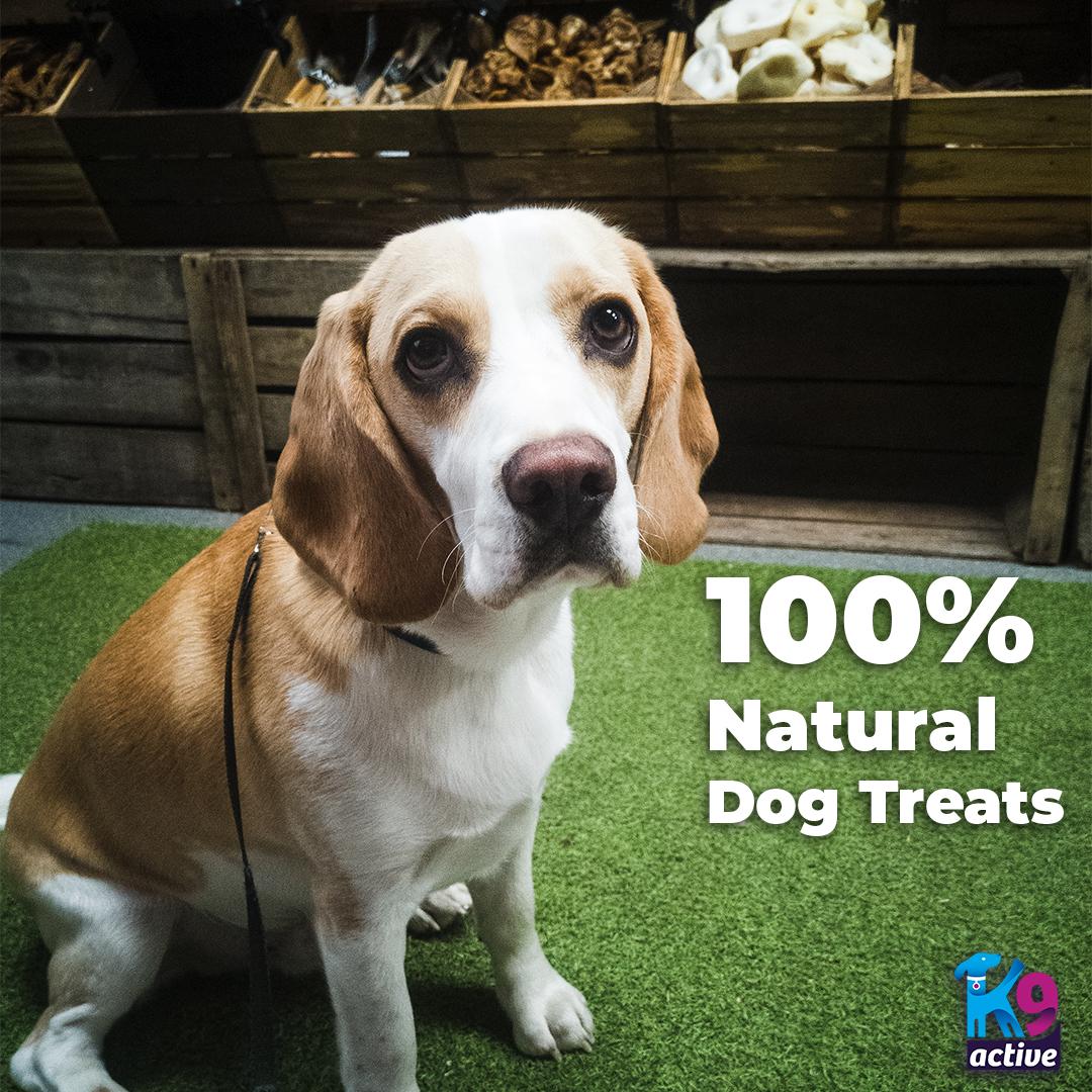 100% Natural Dog Treats on K9 Active Instagram
