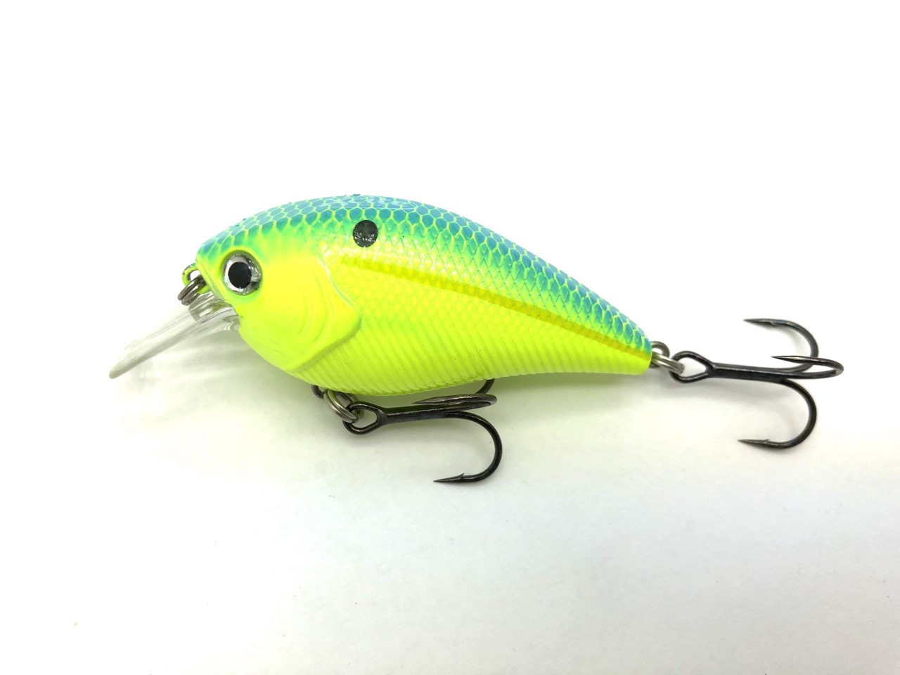 Chartreuse Blue Back