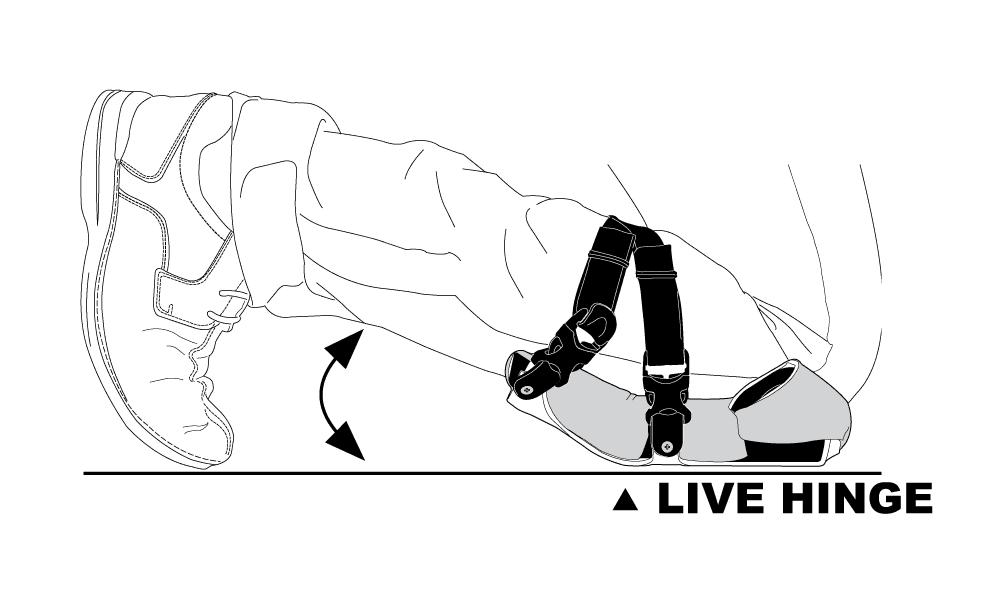 ap2.png