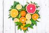 Citrus Blend Pure Plant Essential Oil