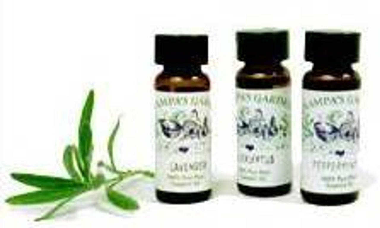 Vetiver Essential Oil - 100% Natural, Pure and Therapeutic Grade by Grampa's Garden, Made in Maine USA