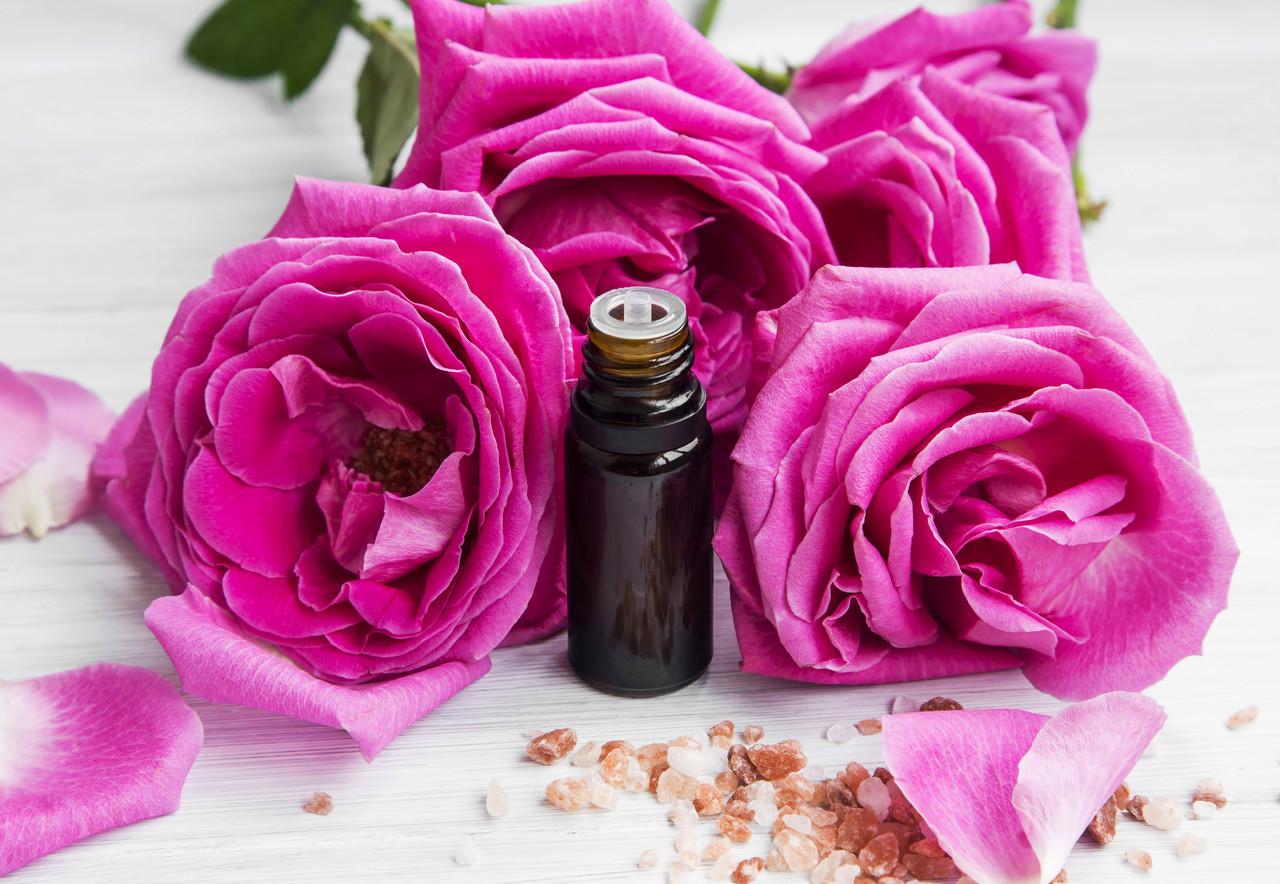 Rose Absolute - Rosa centifolia