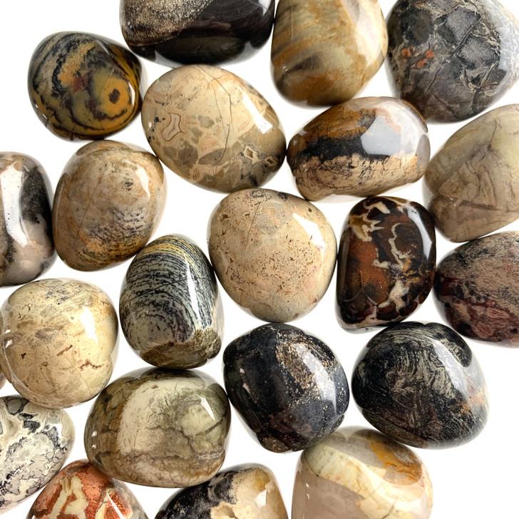 Silver Leaf Jasper Tumbled Stones