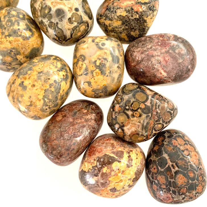 Leopardskin Jasper Tumbled Stones
