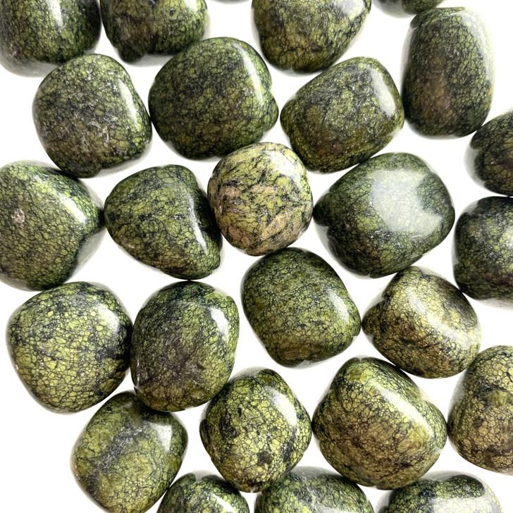 Green Snakeskin Jasper Tumbled Stones