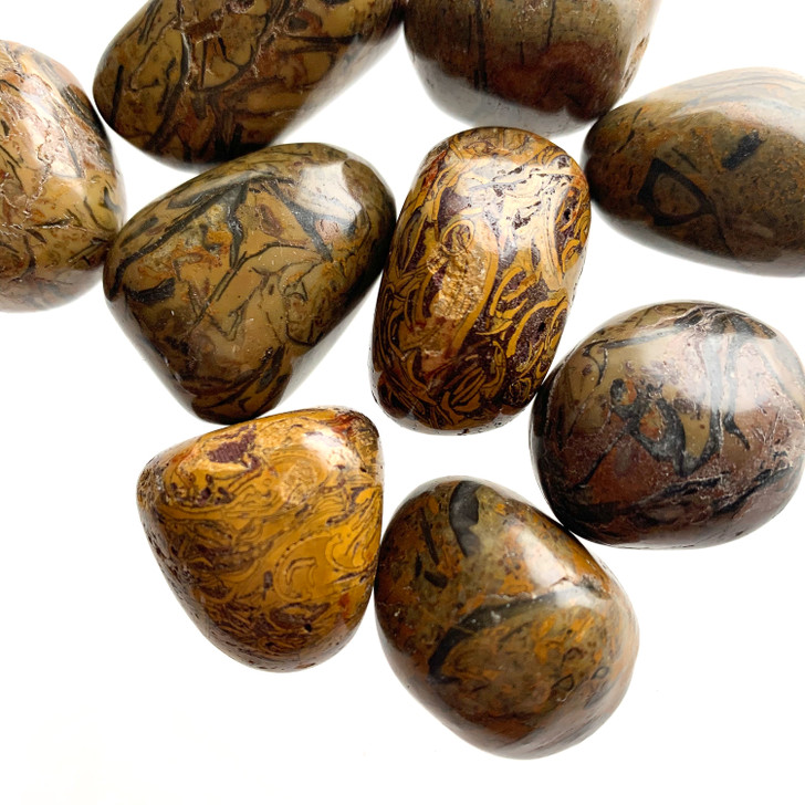 Brown Snakeskin Jasper Tumbled Stones
