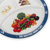 The Gastric Band Plate