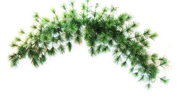 """NS36-60 36"""" NEEDLE PINE SWAG (D5230-60)"""