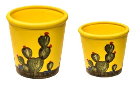 ELM JHF1804-094 Plant Pot with Cactus Design Medium