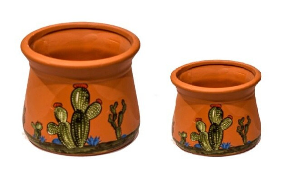 ELM JHF1804-097 Classic Shape Medium Plant Pot with Cactus Design
