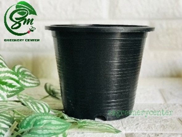Big Round Black Pot