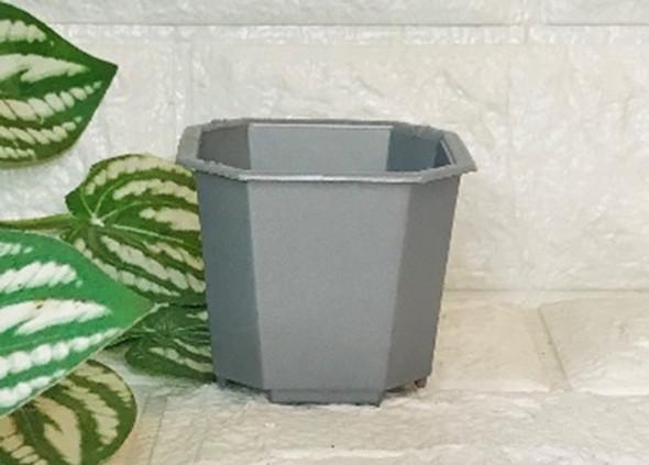 Mini Octagon Pot