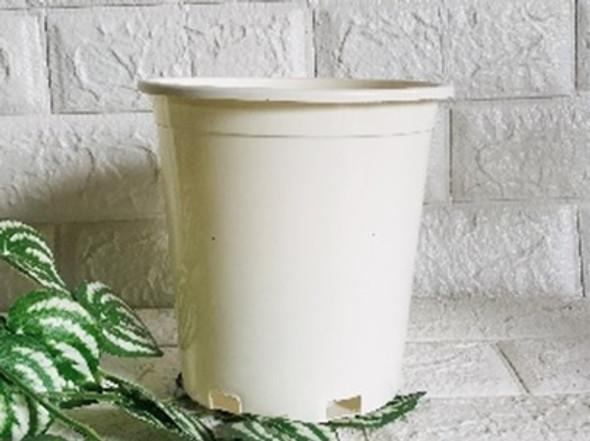 Tall Round Pot