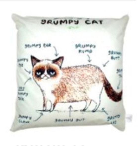 "Style & Collection  17""x17"" Grumpy Cat Suede Throw Pillow Case"