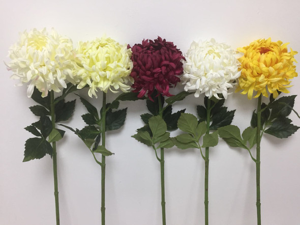 Daisy Flower BLM JHF1804-218 70S120086