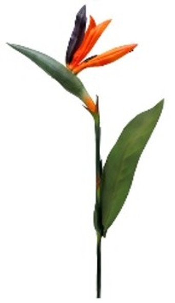 Bird of Paradise Spray Flower OS-0555/001OR