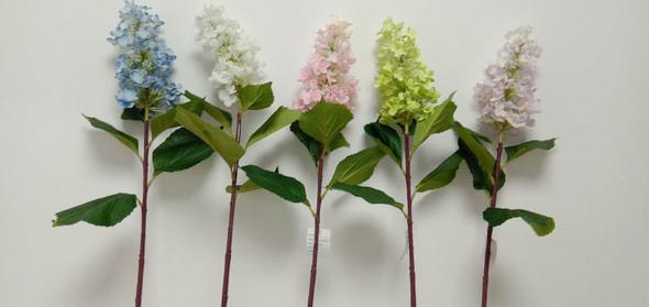 Peegee Hygrangea Flower 07S114008
