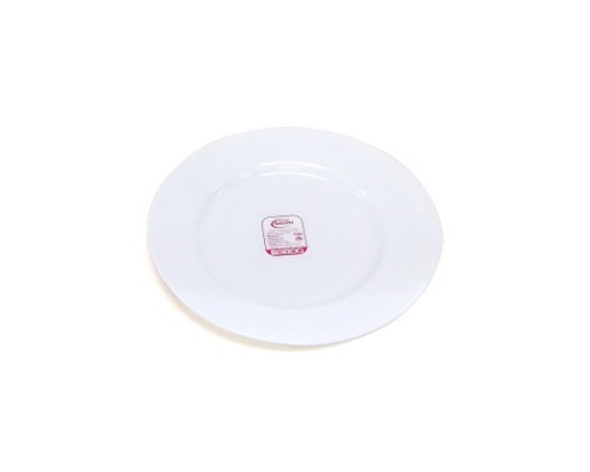 HG-FPL100/P 10in Opal Glass Flat Plate