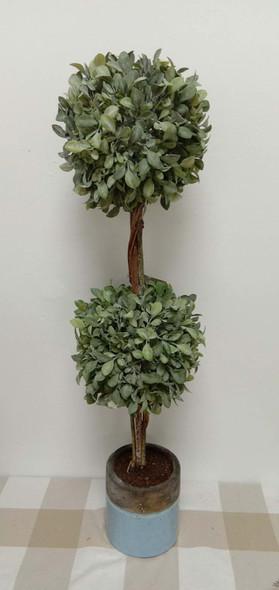 Topiary Plant JHF1804-253 76P121009-P307