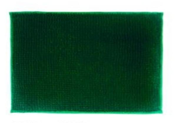"40""x60"" Dark Green Microfiber Bathrug"