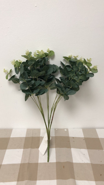 Eucalyptus Bunch JHF1804-243 53B108001